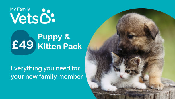 puppy and kitten pack