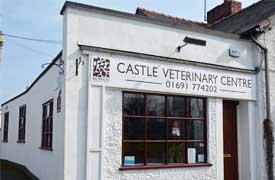Castle Vets