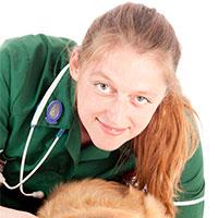 Anne Ward - PGCertTLHE BSc DipAVN(Surgical) RVN