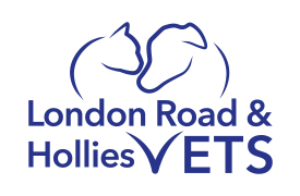 London Road Veterinary Centre