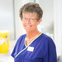 Sue Warner -