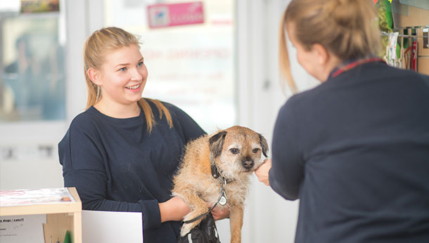 Client with terrier